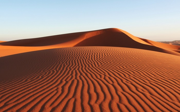 Desert Biome - ThingLink