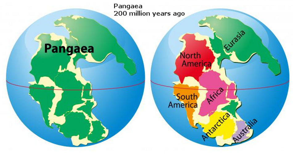 About 200 million years ago there was only one continent thinglink gumiabroncs Gallery