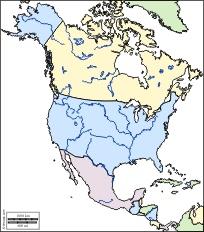 Cartina Politica America Nord.Prova America Settentrionale Carta Muta