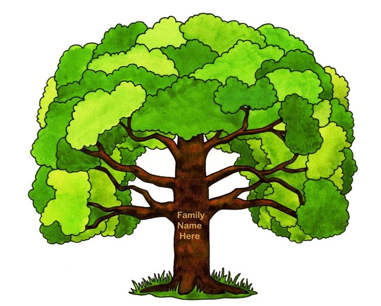 изучаем древо жизни картинки по английскому следует ранее