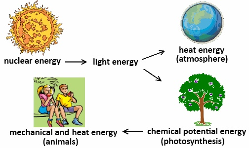 Law of conservation of energy/entropy - ThingLink