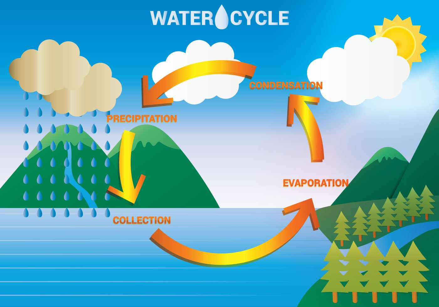 The Water Cycle - Lessons