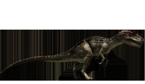 Allosaurus Diagram