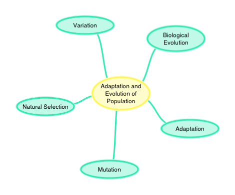 Population Concept Map.Adaptation And Evolution Of Populations Ck 12 Foundation