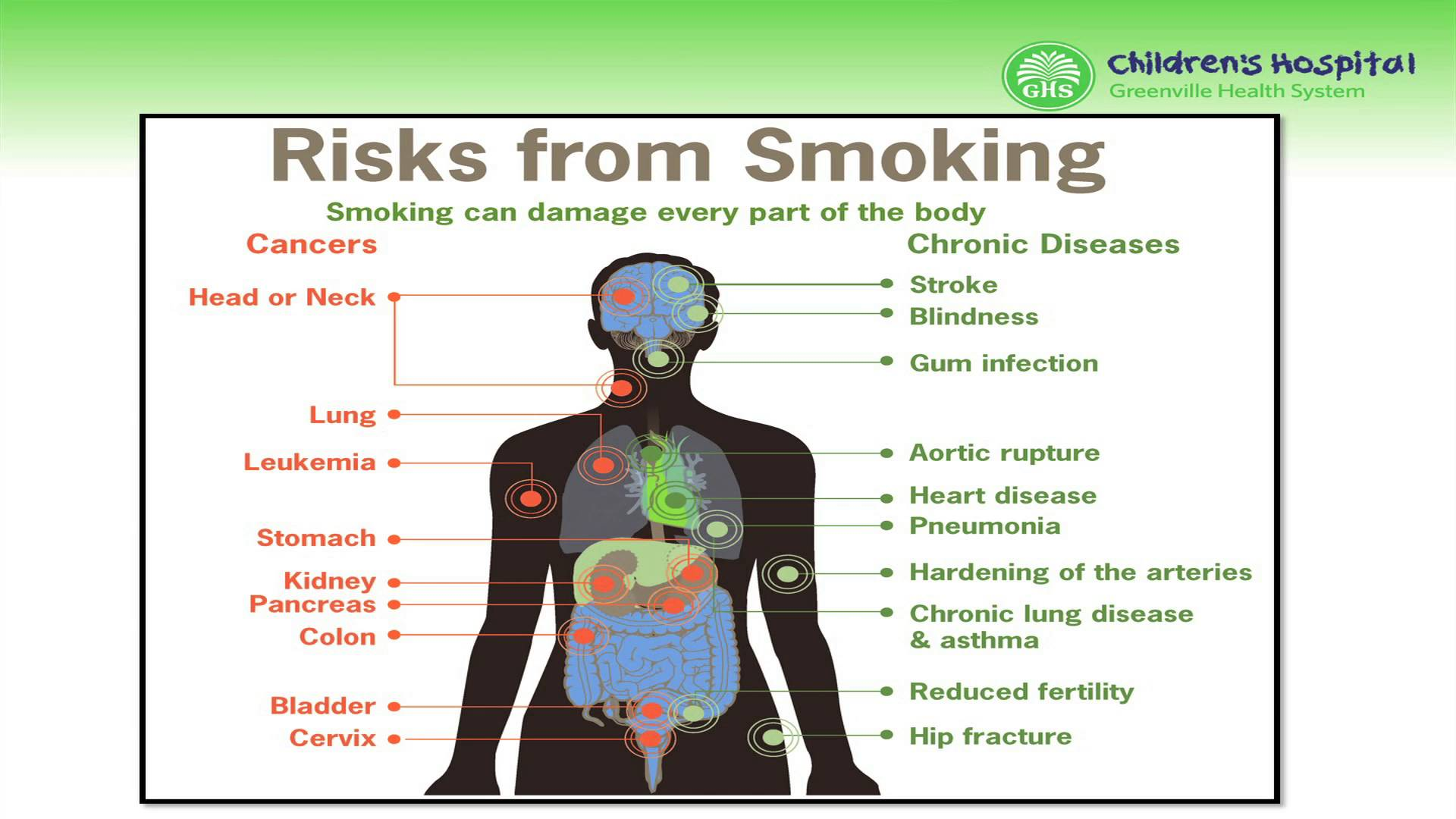 the many health risks of smoking Health risks of smoking 'never give up giving up' is what the ad campaigns say, and we agree completely one of the most eye opening dangers of smoking is the reduction in the average life span of a smoker on an average, female smokers tend to lose out on about 14 years of life because.
