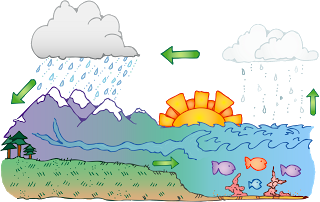 Water cyclemovement of water between the atmosphere land thinglink also when water that collects as droplets on a cold surface when humid air is in contact with itdivdivbrdiv ccuart Image collections