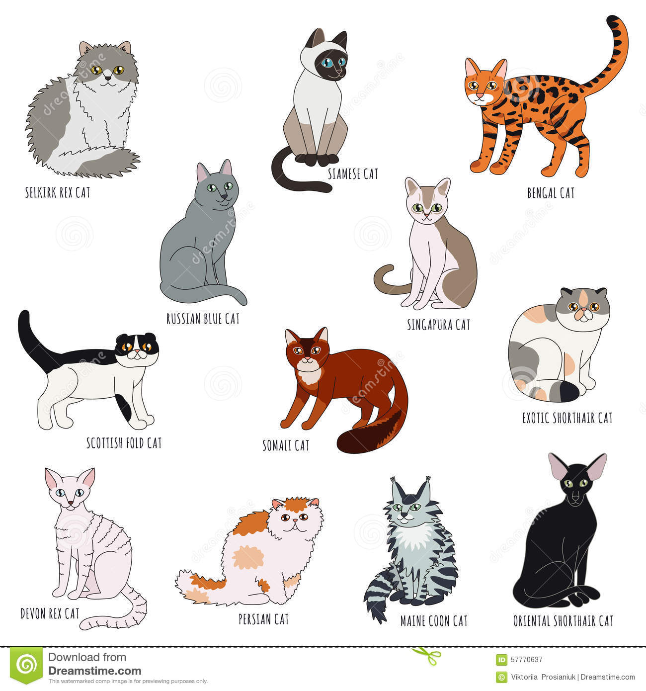 Cat Breeds ThingLink