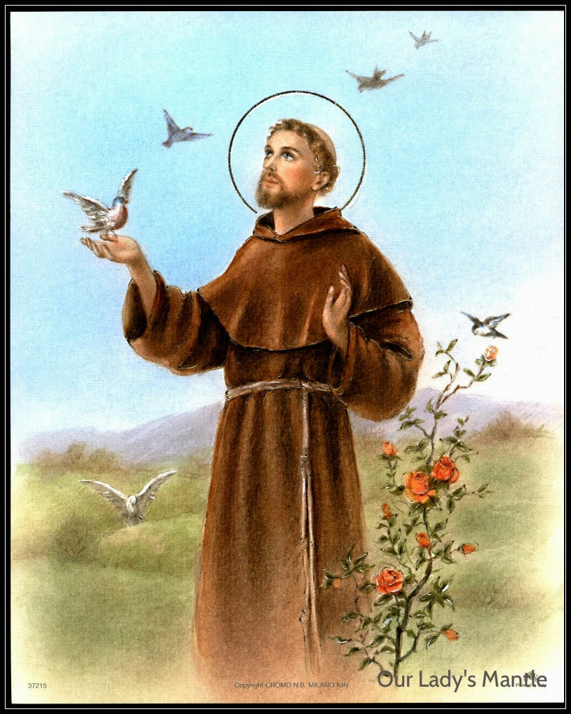 Image result for ST FRANCIS